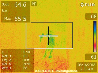Thermal Imaging Picture at Walker Ames in Port Gamble